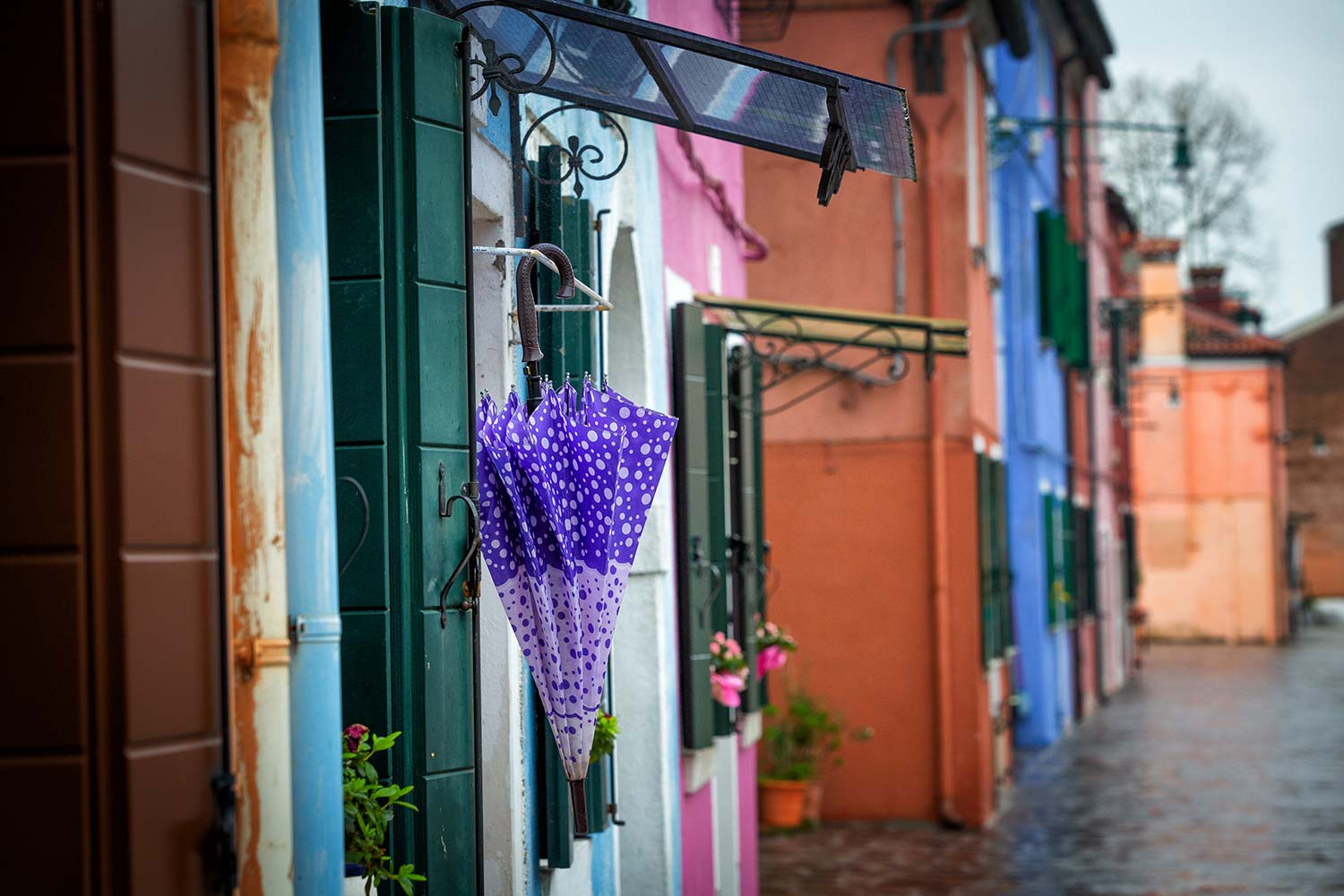 A Colorful Life, ItalyWise, Burano